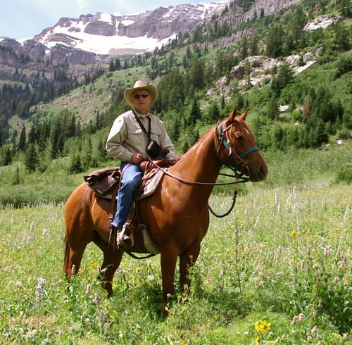 Man on a horse in the mountains